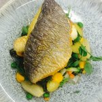 Sea Bream with a Crab Boudin, Summer Vegetable Nage