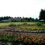 Photo de Oregon Garden Resort