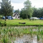 View of tent area from the far side of the pond