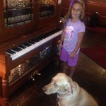 My kid loved the player piano. The dog didn't know what to think :)
