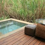 Plunge Pool - Paddy Dwelling