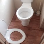 Don't expect to find toilet seat like this