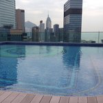 Roof top pool at the Regal!