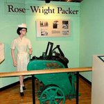 Rose-Wright packer