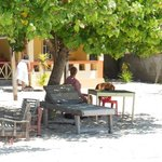 Bara Beach Bungalows & Restaurant의 사진