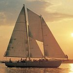 Schooner Woodwind