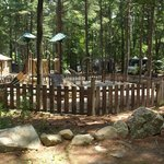 Φωτογραφία: Boston Minuteman Campground