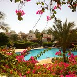 Mexicana Sharm Resort resmi