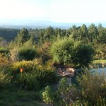 Fynbos Ridge Country House & Cottages resmi