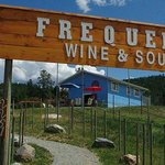 Frequency Winery - The Wine and Sound Experience