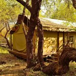 Photo de Thakadu River Camp