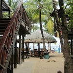Foto de Bananarama Beach and Dive Resort