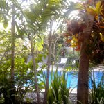 Photo of Tropical Bali Hotel