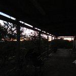 Ningaloo Bed & Breakfast Foto