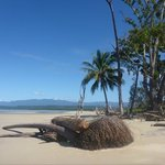 Koala Beach Resort Daintree resmi