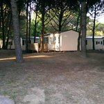 Photo de Camping Ca' Savio
