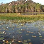 Davidson's Arnhemland Safari Lodge照片