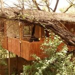 The Tree House Resort resmi