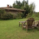 Foto de Mountain Gorilla View Lodge