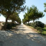 Photo of Hotel Masseria Bandino