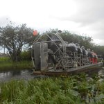 Photo of Airboat in Everglades - Private Tours