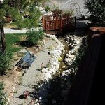 The view of the bubbling stream and yard from our veranda
