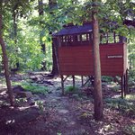 Foto di Maple Tree Campground