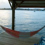 View from the hammock- Bocas Town in the distance. You could see the lights at night.