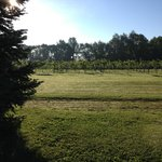 Madison Vineyards B&B의 사진