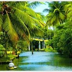 صورة فوتوغرافية لـ ‪Our Land Island Backwater Resort‬