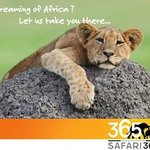 Safari 365 - Day Adventures