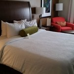 Hilton Garden Inn Orlando at SeaWorld resmi