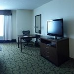 Φωτογραφία: Hilton Garden Inn Orlando at SeaWorld