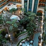 Φωτογραφία: Embassy Suites Miami Airport