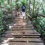 Chilamate Rainforest Eco Retreat照片