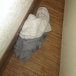 The dirty men's boxers I found behind the door in my attempt to throw that dirty wash cloth back