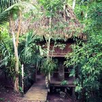Martz Farm Treehouses and Cabanas Ltd. Foto