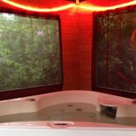 The lodges private hot tub