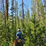 Horseback riding - we heard the Ranch property is over 100 acres