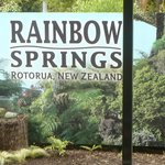 Rainbow Springs Kiwi Wildlife Park Foto