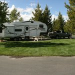 Yellowstone Grizzly RV Park resmi