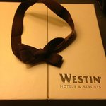 The Westin South Coast Plaza resmi