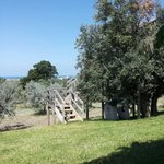 Photo of Agriturismo Podere l'Agave