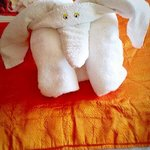elephant towels on your bed in the ocean hotel