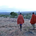 A guided walk near the camp with your Masai hosts