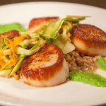 PAN-ROASTED SEA SCALLOPS pea purée, shaved asparagus salad, lime-scented farro