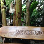 Φωτογραφία: Banana Bungalow Maui Hostel