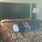 Photo de Heartland Inn - Coralville