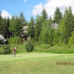 Photo of Whistler Golf Club
