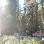 Lodgepole Campgroundの写真